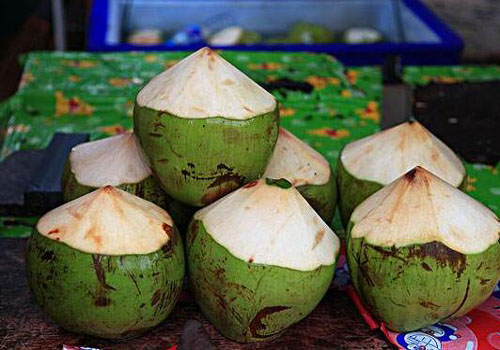 Coconut import customs clearance process