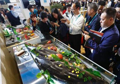 進口海産品首秀進博會吸引很多人參觀