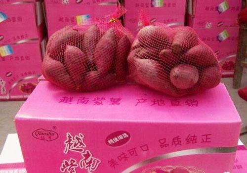 越南紫薯進口到國內