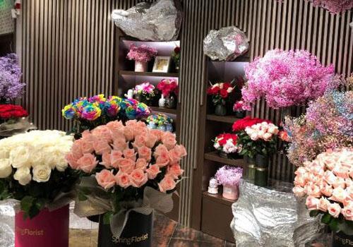 进口花卉越来越受人们喜爱