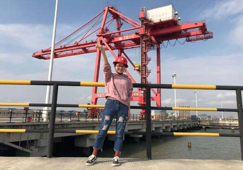 專業報關員碼頭辦理進出口貨物清關手續