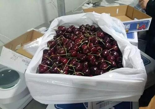 新西蘭水果進口報關到中國