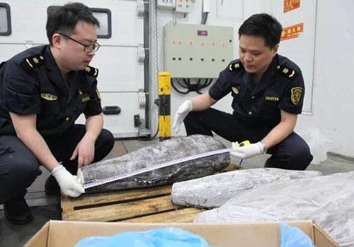 進口水產品報關配合海關查驗