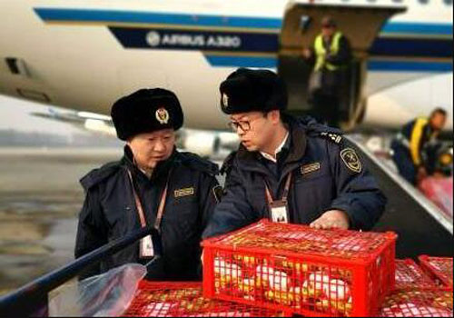 The customs helps import aquatic products to clear customs