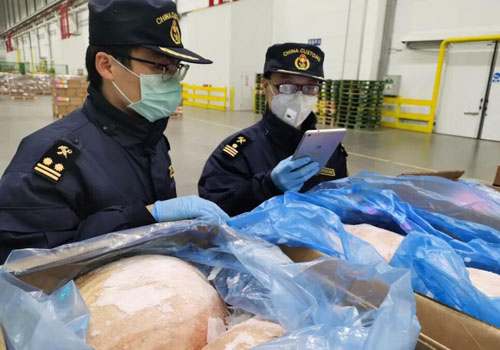 海關查驗進口凍肉