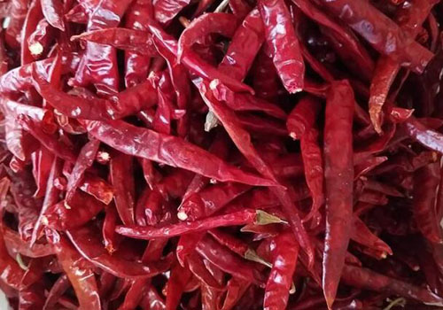 Dry Indian chili customs clearance